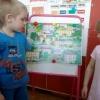 Дошкольное образование. Организация деятельности дошкольного образовательного учреждения